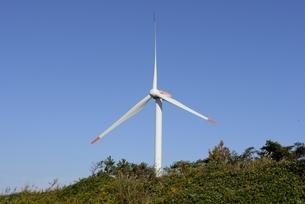 鳥取県,国道9号線沿いの風力発電の写真素材 [FYI04591714]