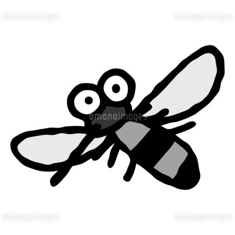 デフォルメした蚊の単体のイラスト素材 [FYI04591889]