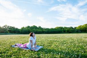 公園でヨガをする女性の写真素材 [FYI04591979]