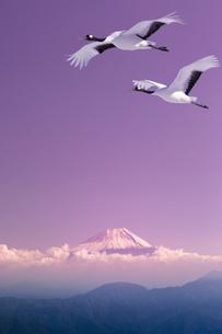 富士山と丹頂鶴CGの写真素材 [FYI04592049]