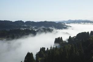 星峠の棚田の雲海の写真素材 [FYI04592419]