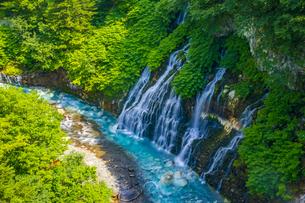 美瑛の白ひげの滝の写真素材 [FYI04592608]