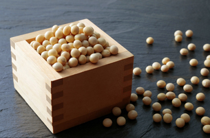 大豆の写真素材 [FYI04592667]