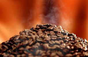 コーヒー豆の湯気の写真素材 [FYI04592687]