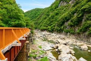 関西の風景 JR 福知山線廃線敷の写真素材 [FYI04592805]