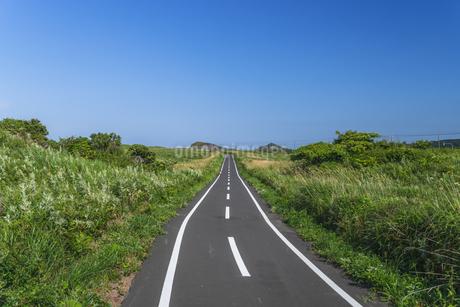 青空の下の自転車道の写真素材 [FYI04593277]