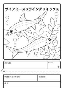 サイアミーズフライングフォックス 塗り絵 応募用紙のイラスト素材 [FYI04593831]