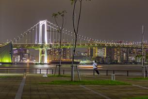 東京都江東区 夜の豊洲ぐるり公園からのレインボーブリッジの写真素材 [FYI04594009]
