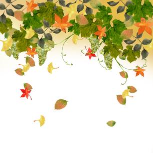 ブドウと紅葉の水彩イラストのイラスト素材 [FYI04594072]