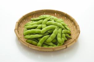 枝豆の写真素材 [FYI04595245]