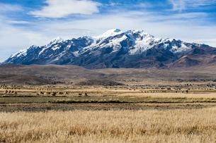 アンデス高原から望むレアル山群:イヤンプー峰とアンコウマ峰の写真素材 [FYI04595311]