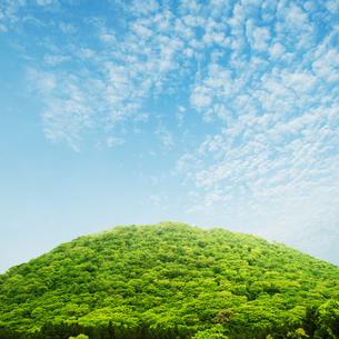 新緑に覆われた山と青空の写真素材 [FYI04595560]