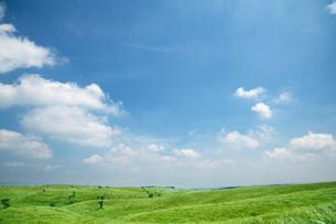 草原と青空の写真素材 [FYI04595569]