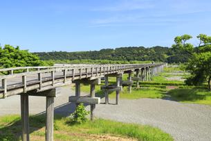 蓬莱橋の写真素材 [FYI04595946]