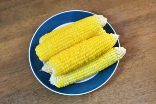 煮て塩を振ったトウモロコシの写真素材 [FYI04595958]