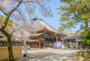 関西の神社仏閣 中山寺の写真素材 [FYI04596032]