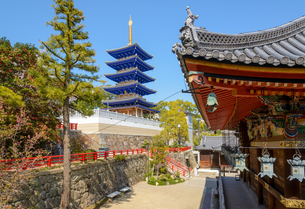 関西の神社仏閣 中山寺の写真素材 [FYI04596033]