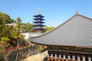 関西の神社仏閣 中山寺の写真素材 [FYI04596035]