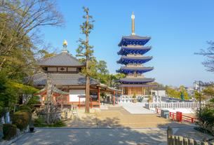 関西の神社仏閣 中山寺の写真素材 [FYI04596037]