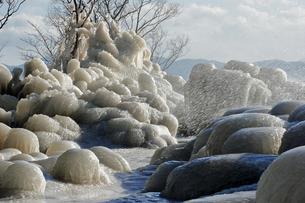 1月 猪苗代湖天神浜のしぶき氷の写真素材 [FYI04596085]