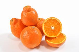 カットしたオレンジの写真素材 [FYI04596090]