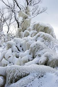1月 猪苗代湖天神浜のしぶき氷の写真素材 [FYI04596543]