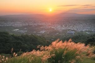 夕焼けの奈良市街とススキの写真素材 [FYI04596809]