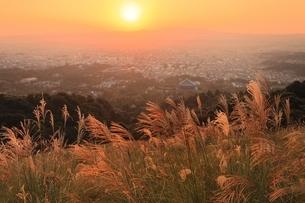 夕焼けの奈良市街とススキの写真素材 [FYI04596821]