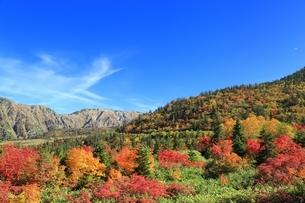 秋の弥陀ヶ原の写真素材 [FYI04596823]