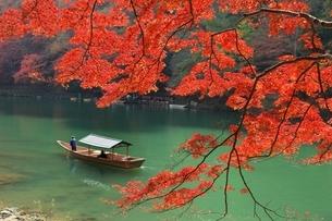 嵐山の紅葉と屋形船の写真素材 [FYI04596857]