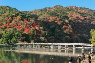 嵐山の紅葉と渡月橋の写真素材 [FYI04596860]