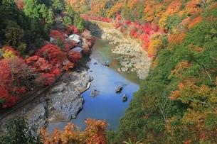 錦秋の嵐山と保津川の写真素材 [FYI04596866]
