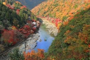 錦秋の嵐山と保津川の写真素材 [FYI04596867]