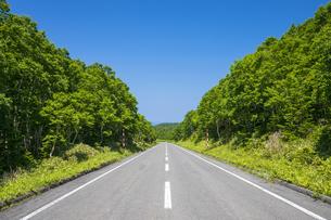 知床横断道路の写真素材 [FYI04597070]