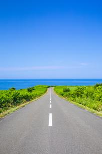 海へ伸びる道の写真素材 [FYI04597090]