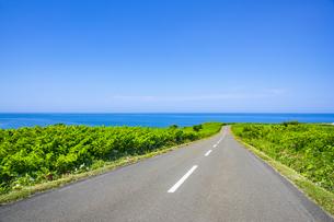 海へ伸びる道の写真素材 [FYI04597092]