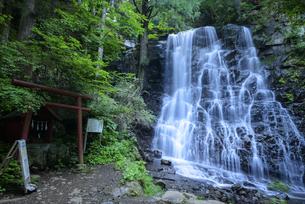 山梨県 母の白滝の写真素材 [FYI04597236]