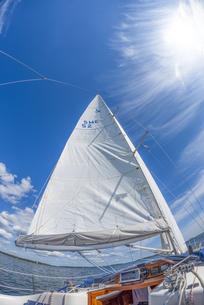 セイリング中のヨットの帆の写真素材 [FYI04597361]