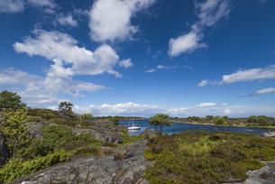 スウェーデン、ストーラナッサ島に停泊するヨットの写真素材 [FYI04597375]