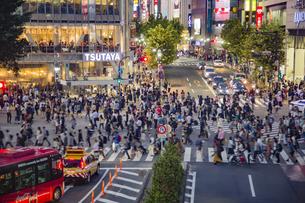 東京都 渋谷区 夜のスクランブル交差点の雑踏の写真素材 [FYI04597536]