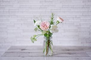 花の写真素材 [FYI04597933]