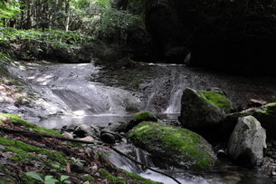 川の途中の浅瀬と苔の生えた岩の写真素材 [FYI04597942]