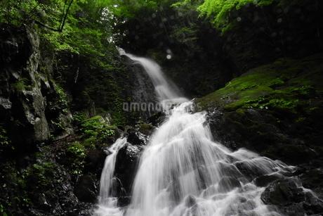 愛媛県の田舎にある白糸の滝の写真素材 [FYI04597950]