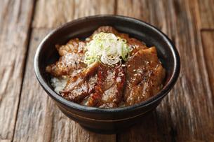 牛丼の写真素材 [FYI04598427]