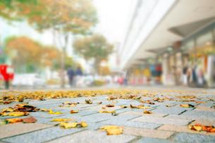 街並み 秋の写真素材 [FYI04598519]