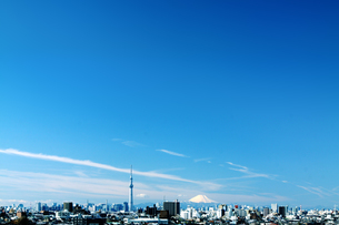 富士山 スカイツリーの写真素材 [FYI04598520]