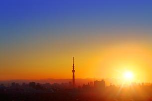東京スカイツリーと夕日の写真素材 [FYI04598557]