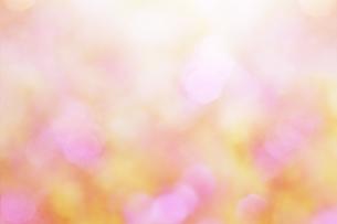 背景 素材 ピンクの写真素材 [FYI04598564]