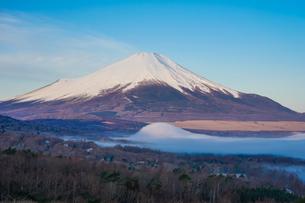 盛り上がった妙な霧を前景に、早春のパノラマ台(山中湖村)から青空を背景にした富士山を望むの写真素材 [FYI04598613]