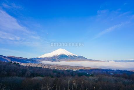 早春のパノラマ台(山中湖村)から青空を背景にした富士山を望むの写真素材 [FYI04598617]